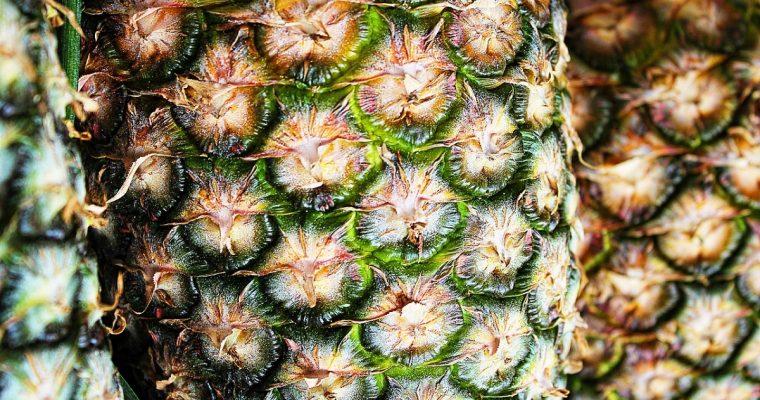 The Pineapple, Dorney