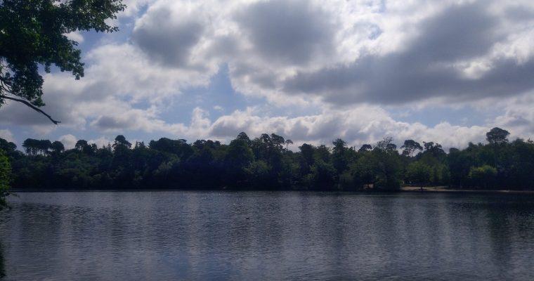 Black Park Country Park, Wexham
