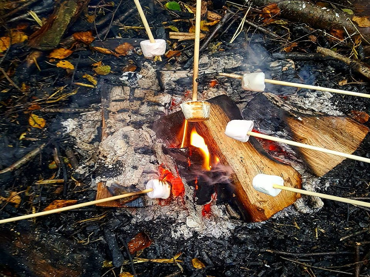 Den Building by the Campfire, Black Park: 13 February 2018