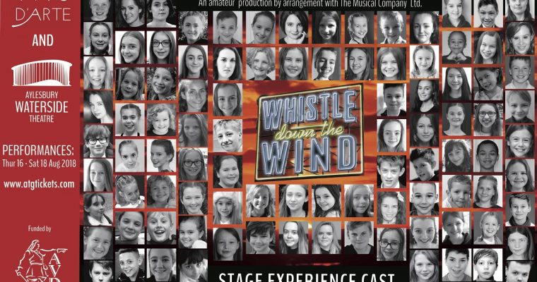 Over 100 Local Young Stars Cast for Stage Exeperience 2018
