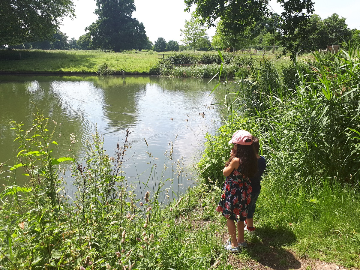 Langley Park, Iver: a Little Ankle Biters Review