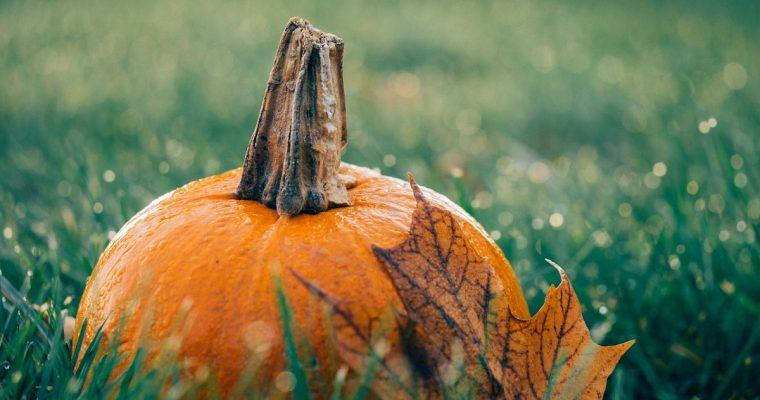 What's on October Half Term & Halloween in Buckinghamshire