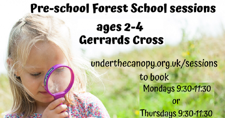 Under the Canopy Forest School