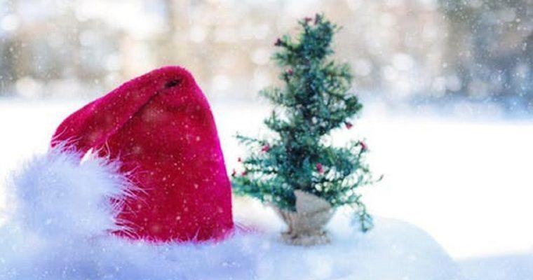What's on this Weekend in Bucks: 15 & 16 December