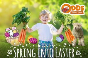Spring into Easter odds farm park buckinghamshire april 2019